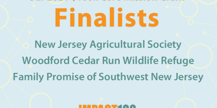 Announcing Our 2021 Grant Finalists!